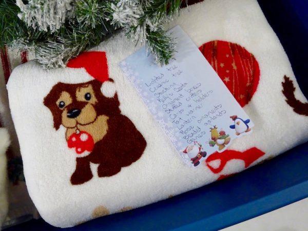 Christmas storage list
