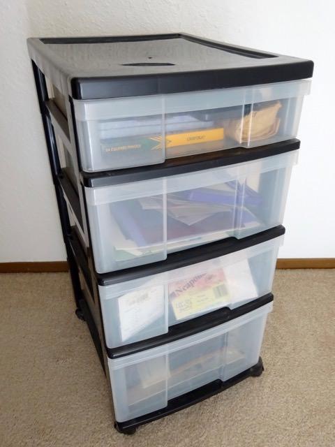 Hide plastic storage bins