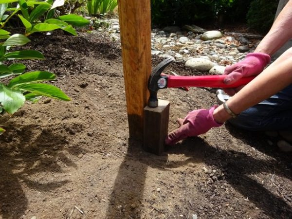 Hammering a scrap of wood into the ground to help set the dirt around a fence post