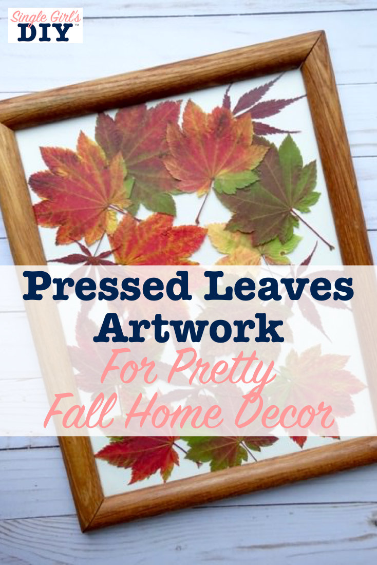 Pressed leaves for fall home decor