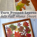 How to press leaves to preserve color