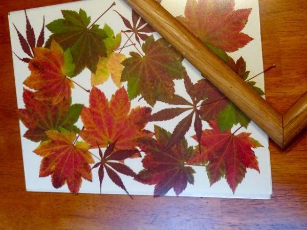 Pressed leaves artwork