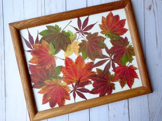 Easy DIY pressed leaves artwork