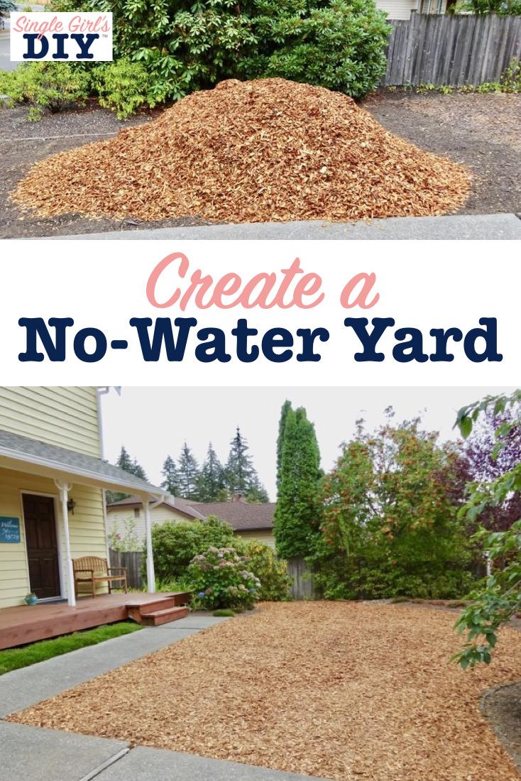 Create a no-water yard