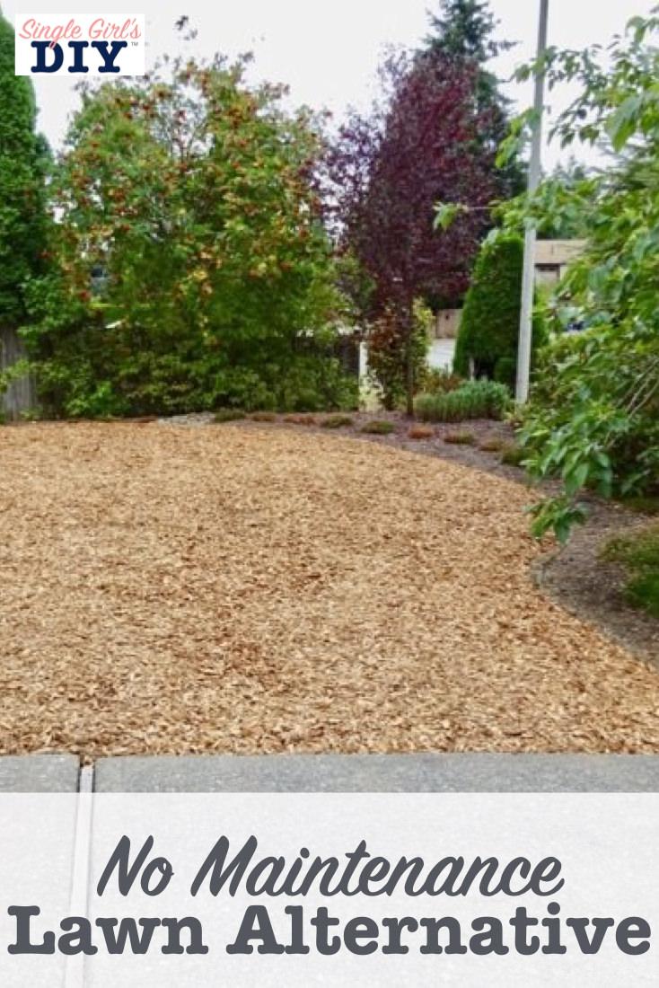 No maintenance lawn alternative