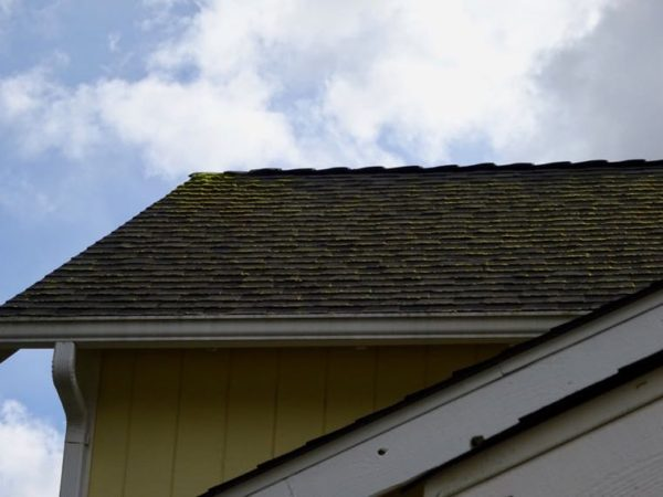 Spring Home Maintenance roof care