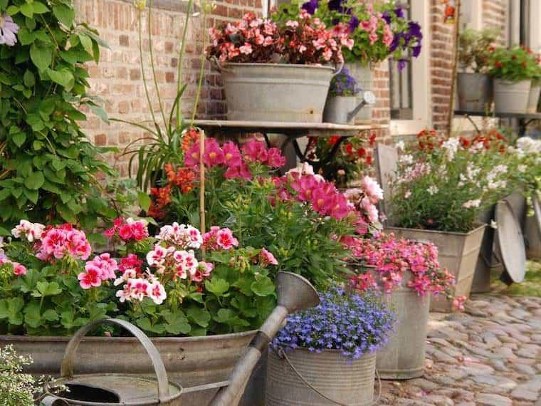 Spring DIY Home Care