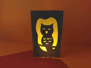 paper luminary with owl cut out