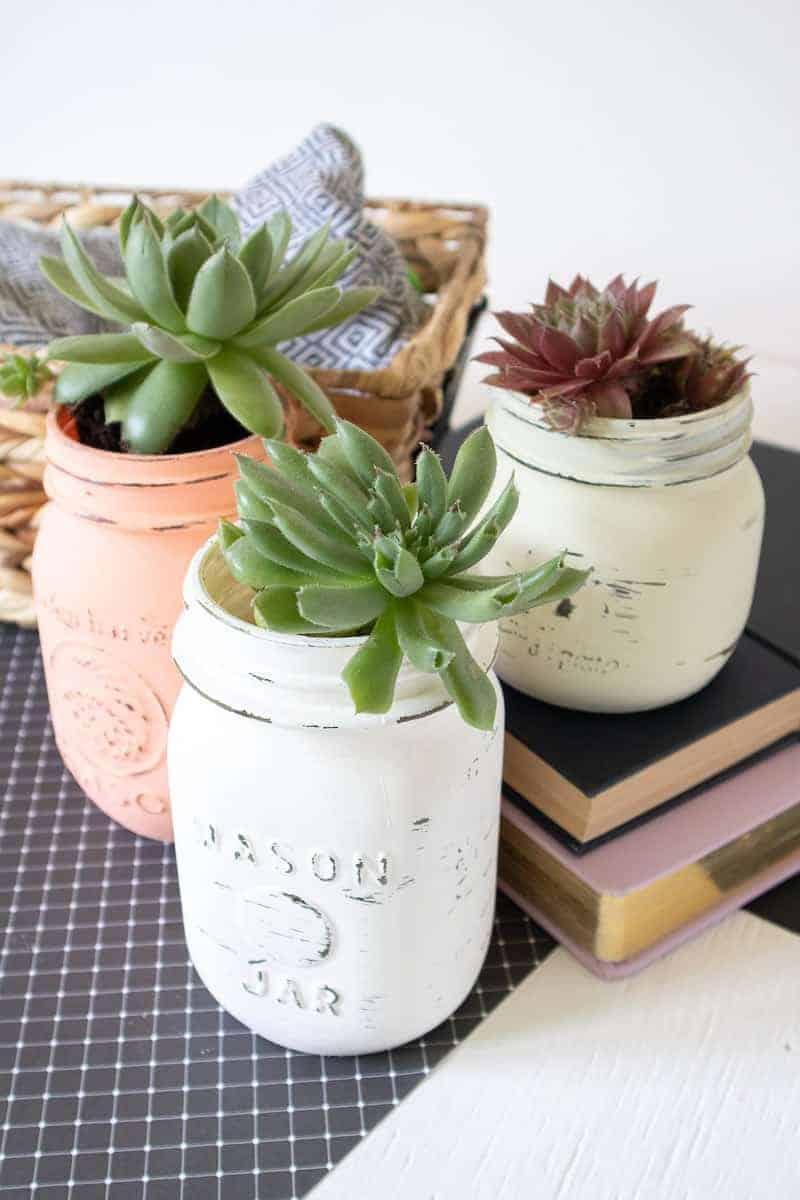 Chalk Paint Mason Jars with plants