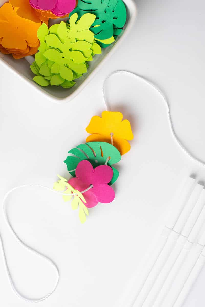 Paper flowers on string for lei