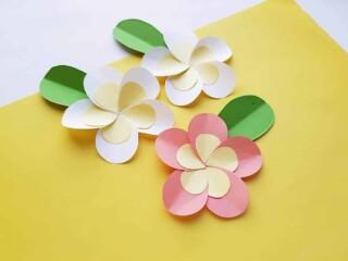 Paper Plumeria on Yellow Background