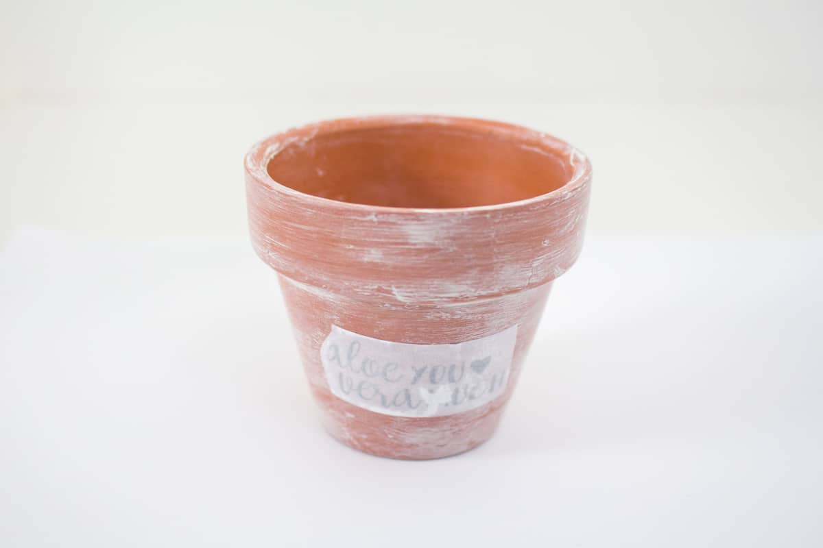 Terracotta planter with design print out dampened