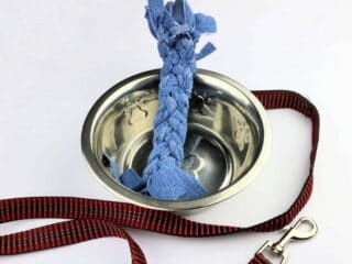 Denim Dog Toy in water bowl with leash