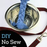 handmade dog toy in pet bowl with red leash nearby