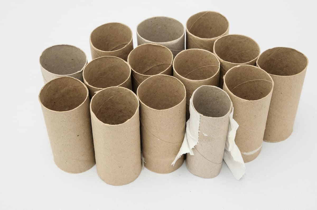 toilet paper tubes on white background