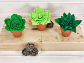 three mini felt succulents in pots